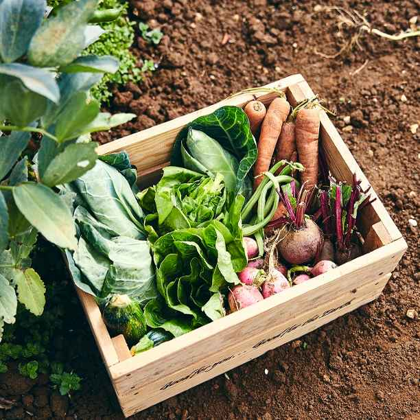 Eight ways to make organic more affordable
