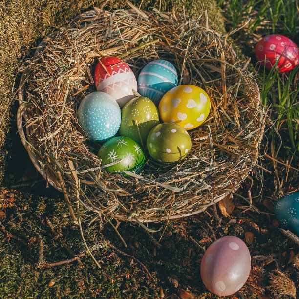 Recipes for a cracking eco-friendly Easter