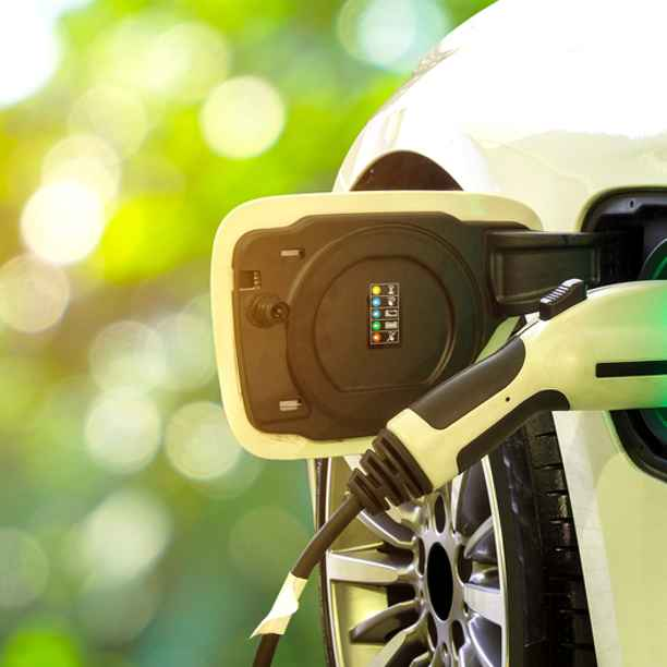 Triodos Bank UK supports bid for EV charging fund