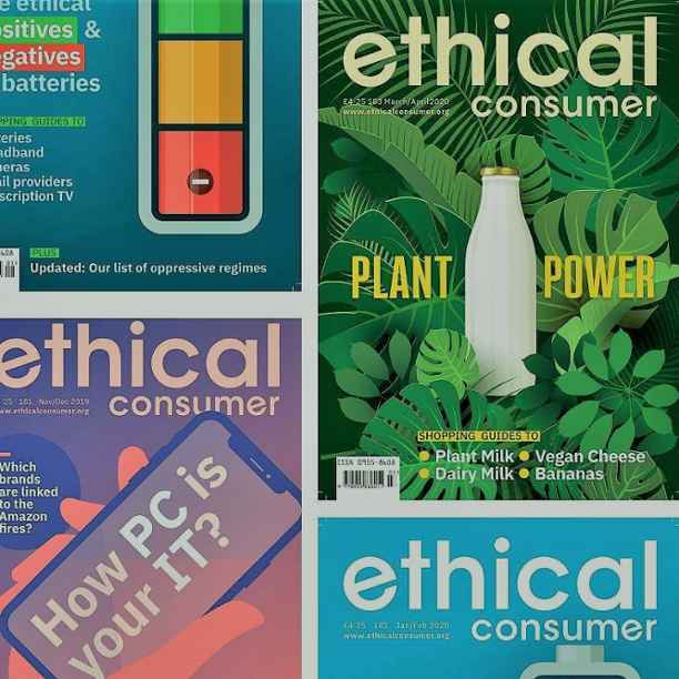 How to be an Ethical Consumer: 30 years of guiding conscious choices