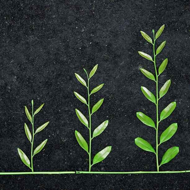 The power of three – an impactful investment portfolio